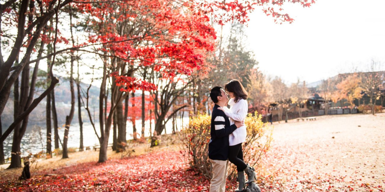 Love Among the Leaves in Seoul | Seoul Vacation Photographer