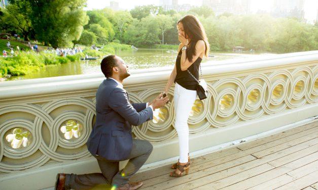 A Central Park Proposal