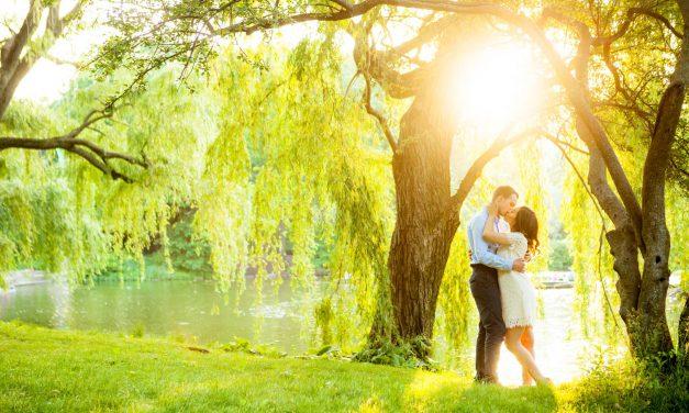 A Dreamy, Sun-Dappled Central Park Engagement