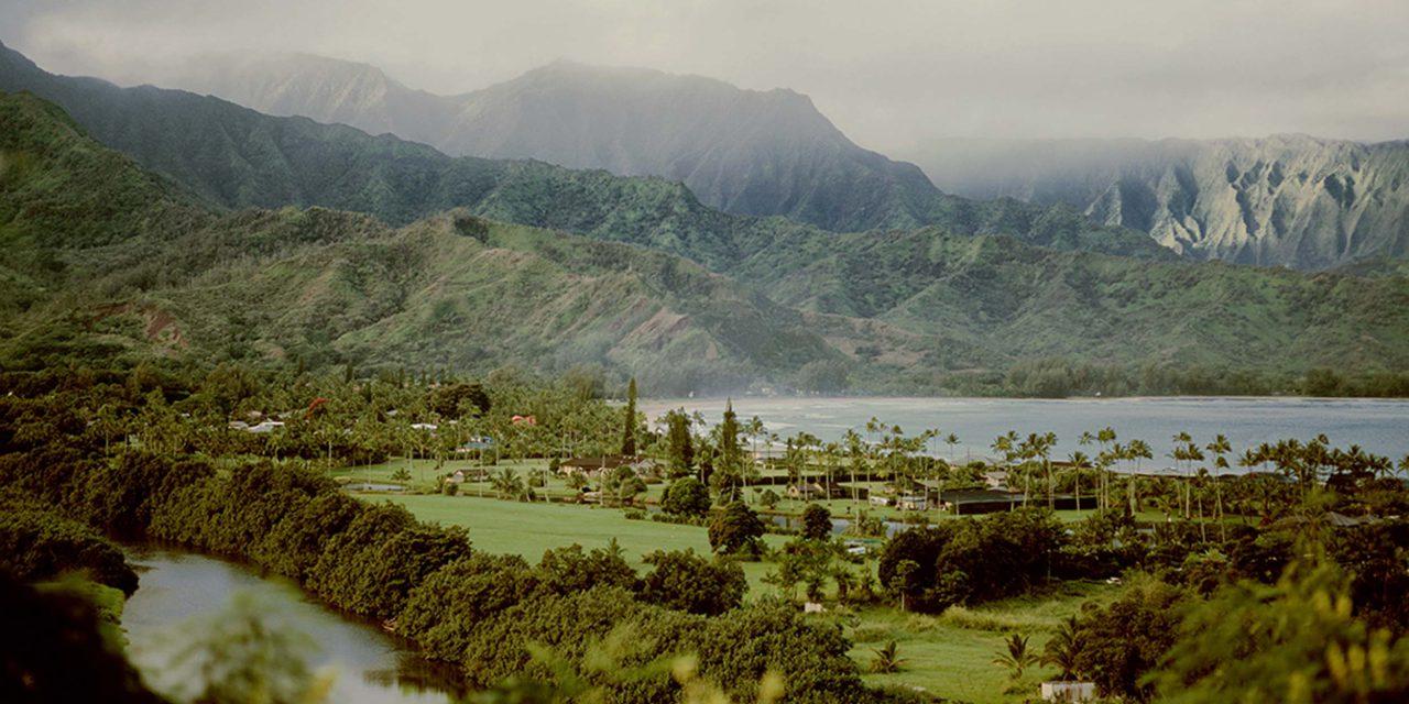 Photographer Q&A Series: Brigitte In Kauai