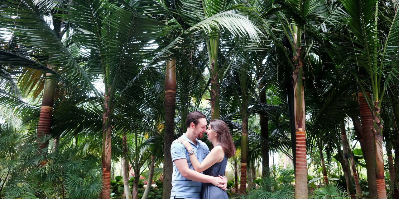 Long Distance Love in Singapore