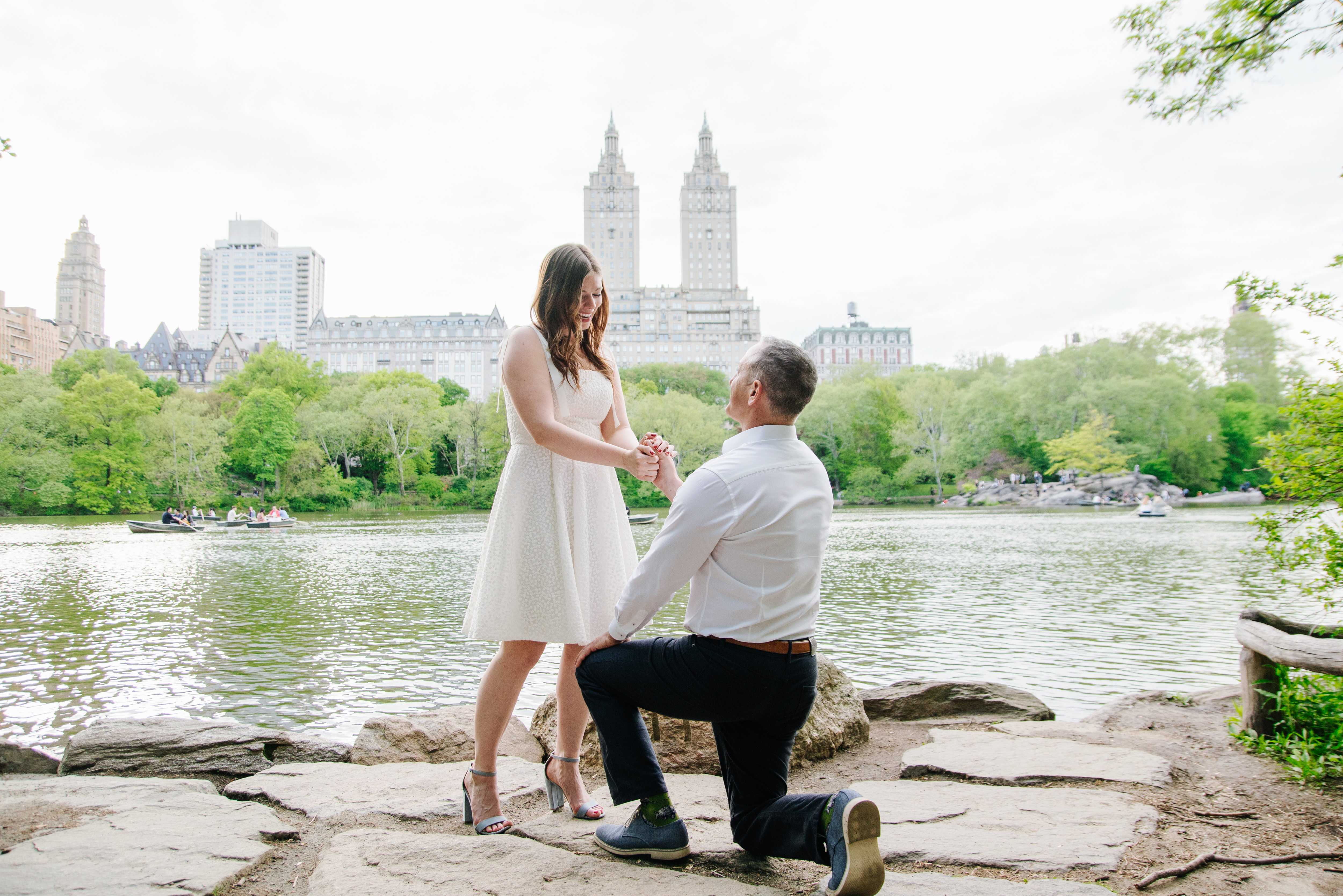 New York Proposal