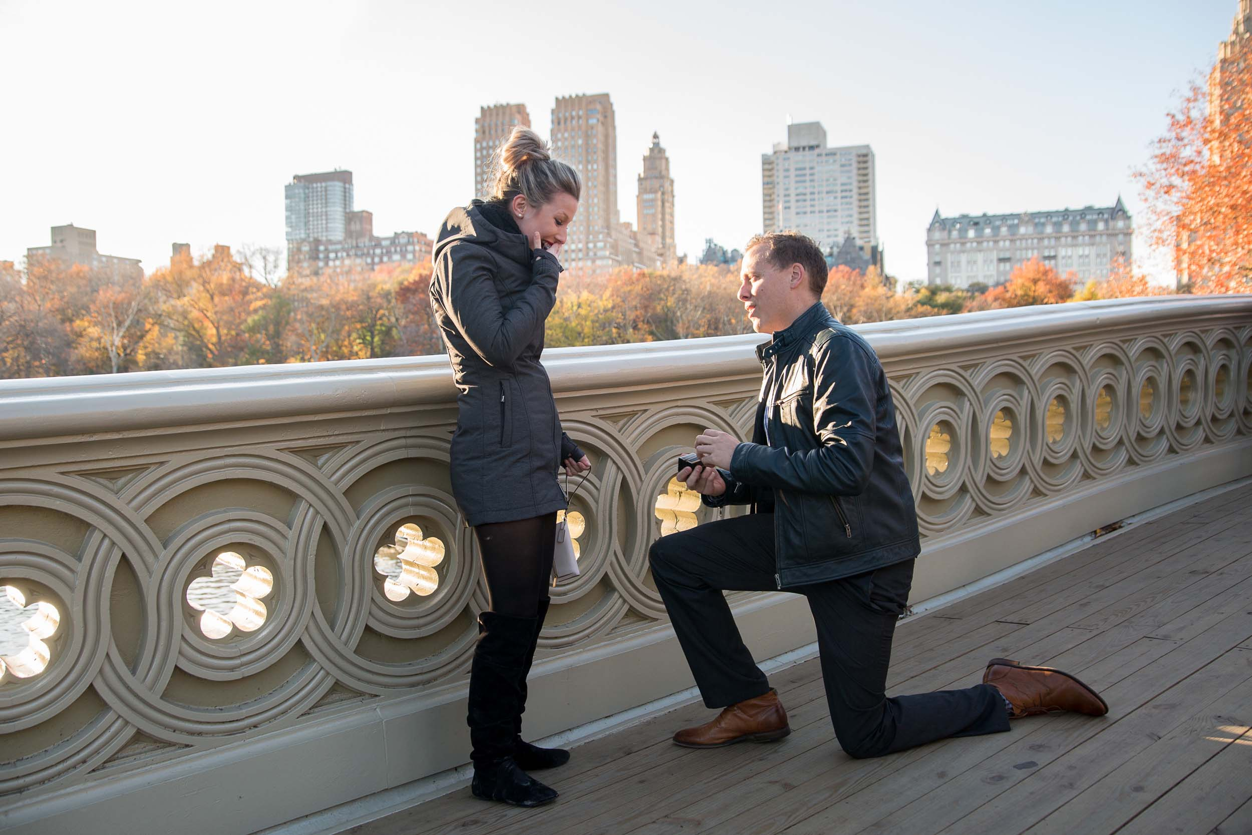 the best places to propose in new york city blog hire a vacation