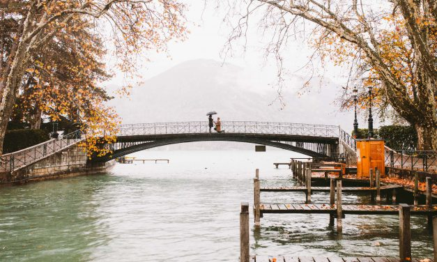 Our Favourite November Proposal Moments