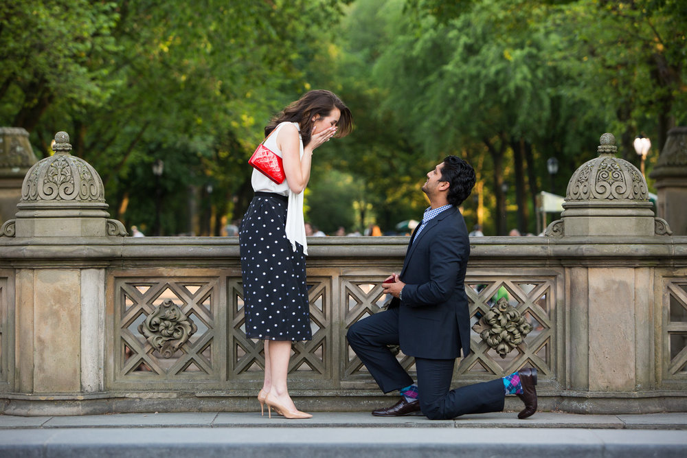 Man proposing to his female partner in Central Park, New York City, USA