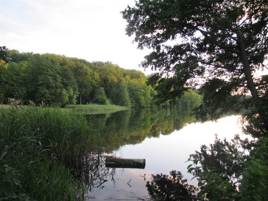 There are three lakes near the garden house Airbnb just outside of Berlin, Germany. (Photo: Courtesy Airbnb)