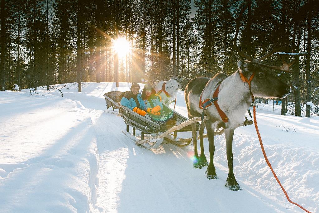 Reindeer sledding in Helsinki is a must! (Photo: Flytographer Karolina in Helsinki)