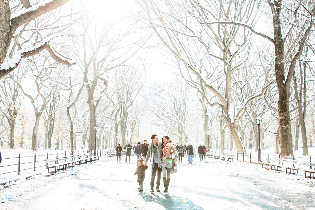Things to Do in New York in January
