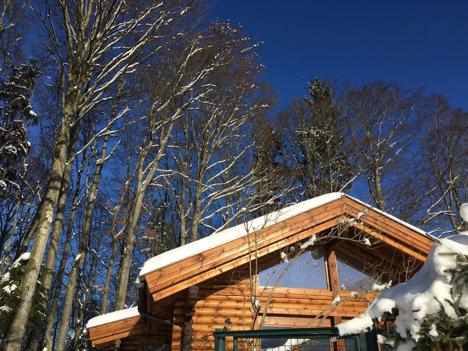 The Hütte am Wald in Salzburg, Austria. (Photo: Courtesy Airbnb)